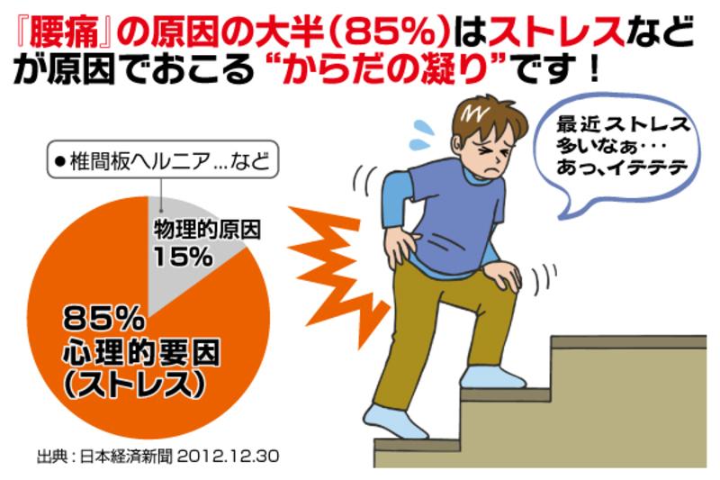 静岡市駿河区にお住いの皆様。腰痛の本当の原因を知っていますか?